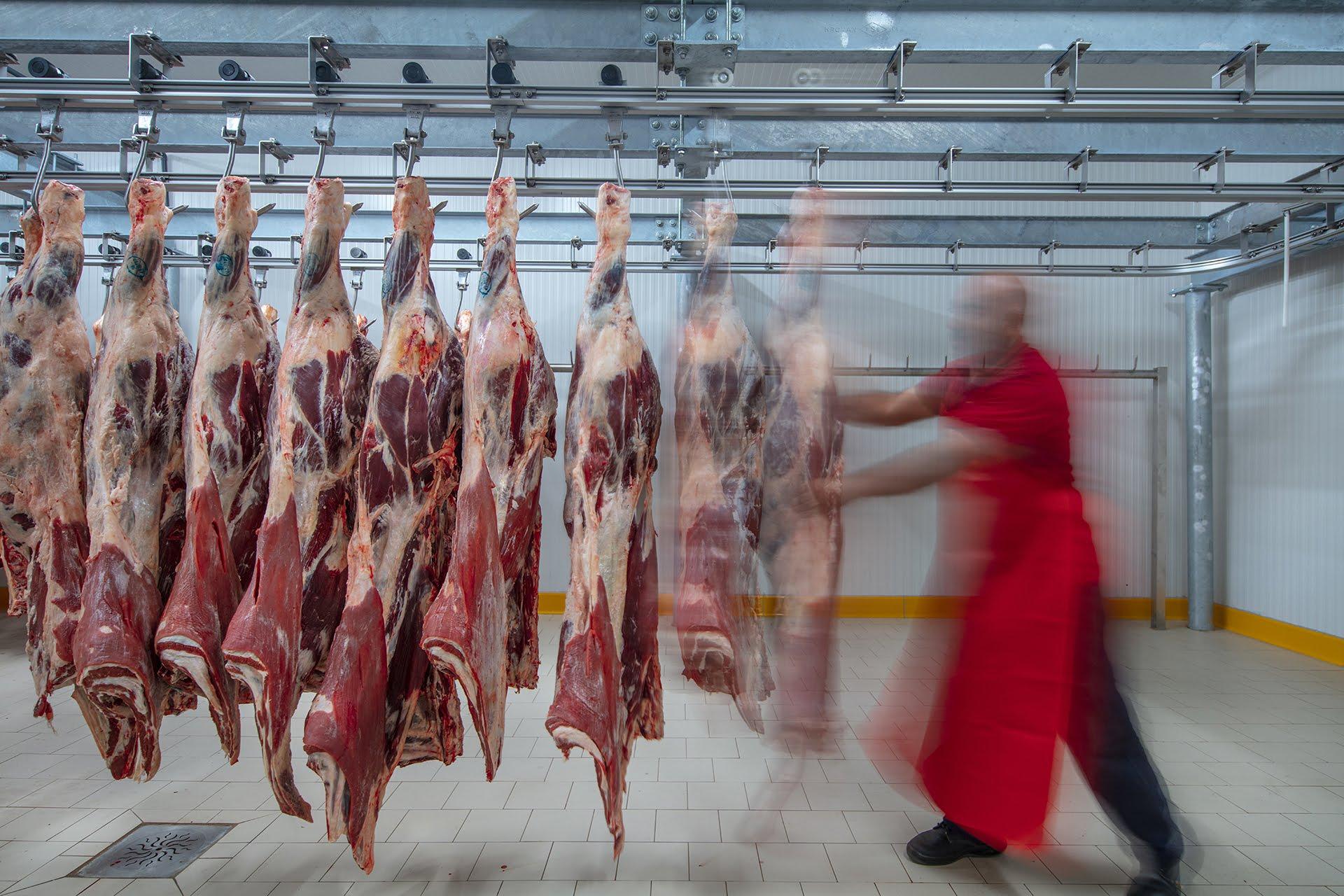 Macellazione Carni e Lavorazione Carni Conto Terzi